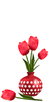 flower-tulip-in-vase-right